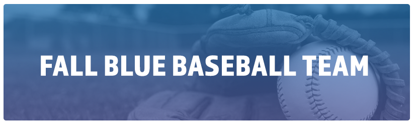 Fall Baseball League – Blue Team
